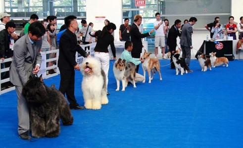 活动在北京国贸国际会展中心(蟹岛)举办,为期两天(9月14日,15日).