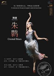 舞剧《朱鹮》——200场纪念演出