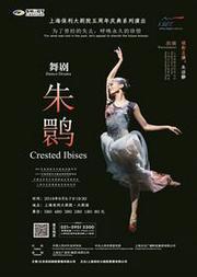 朱洁静领衔主演 舞剧《朱鹮》
