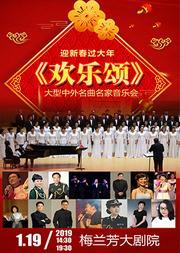 迎新春过大年大型中外名曲名家音乐会《欢乐颂》