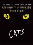 世界原版经典音乐剧《猫》CATS-武汉站
