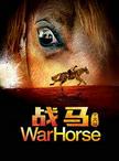 中国国家话极速赛车出品《战马》