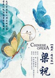 元宵节去老城隍庙听戏赏灯 经典越剧《梁山伯与祝英台》(精选版)