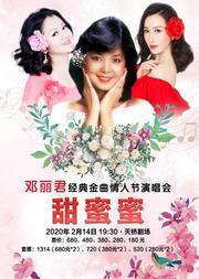甜蜜蜜——邓丽君经典金曲情人节演唱会