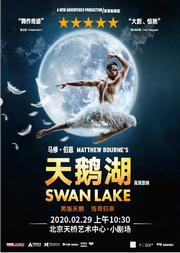 高清影像、马修·伯恩版舞剧《天鹅湖》