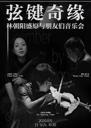 弦键奇缘—林朝阳、盛原与朋友们音乐会